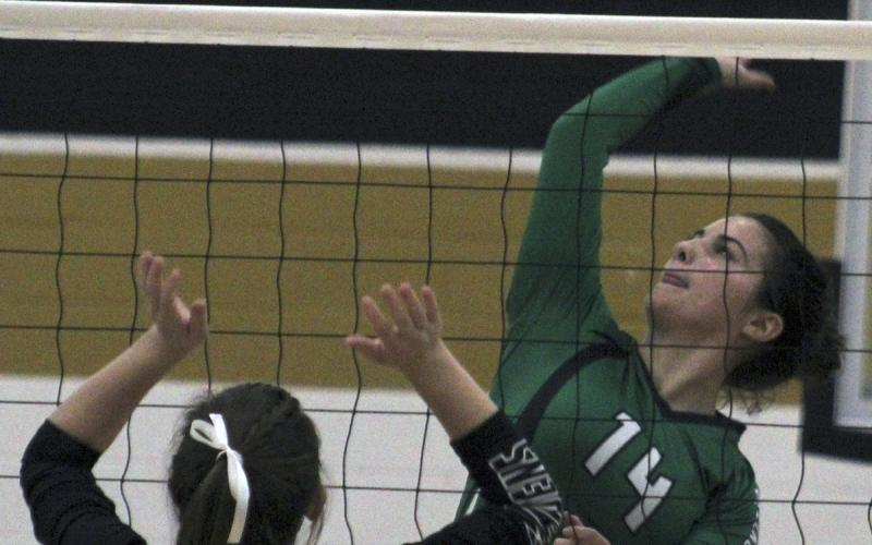 Breckenridge senior middle blocker Makenna Moser pulls back to spike the ball during a game against Comanche.